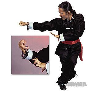 Kung Fu Training Ring