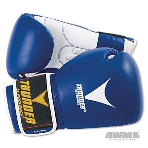 ProForce® Thunder Leather Boxing Gloves w/Vented Palm